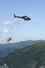 Ecureuil AS350 B3 plus Heli Béarn travaux sur conduite forcée Orlu 09