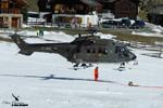AS 332 M1 Super Puma T342