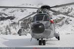 Les super puma de l'armée de l'air qui transporte le président